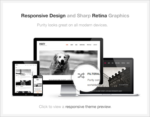 info responsive retina - Purity: Responsive, Clean, Minimal & Bold WP Theme