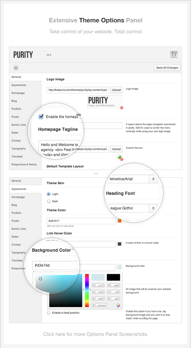 info theme options - Purity: Responsive, Clean, Minimal & Bold WP Theme